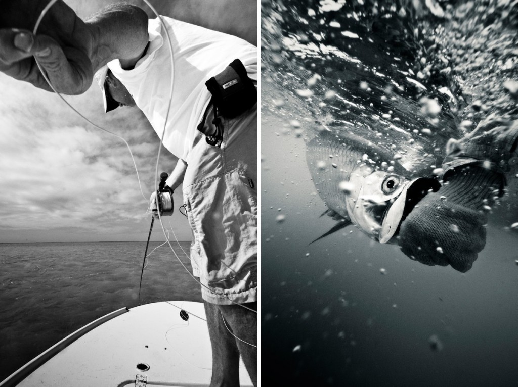 4 tips for getting better hookups with tarpon fly for Fly fishing for tarpon