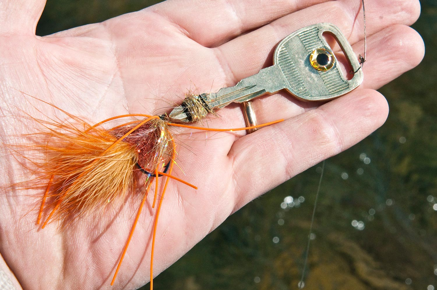 georgia man catches trout on car key, but why? | fly fishing, Fly Fishing Bait