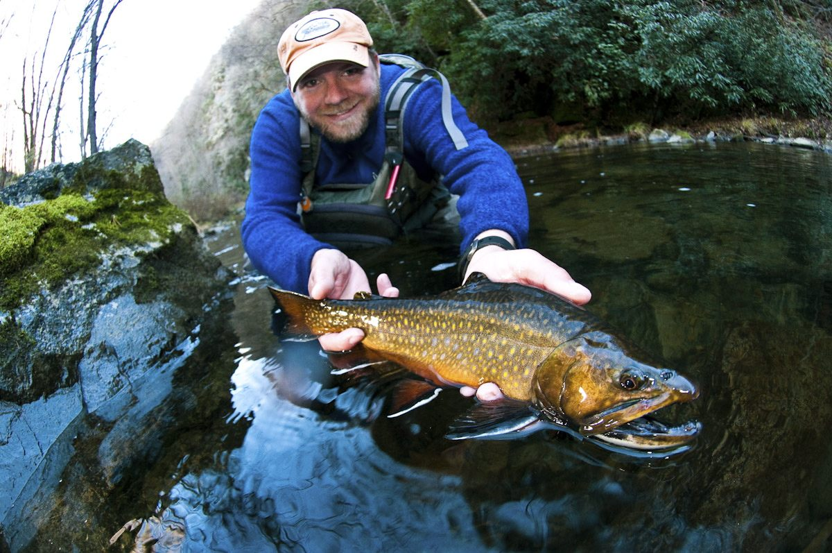 Fly fishing brook trout images for What to use for trout fishing