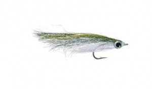 hot-flash-minnow