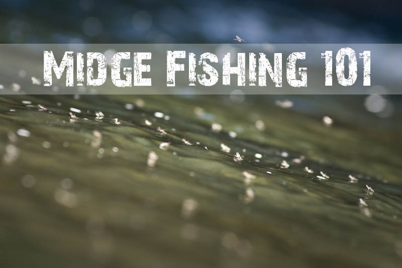 Winter Fly Fishing - Midges 101 | Fly Fishing | Gink and Gasoline