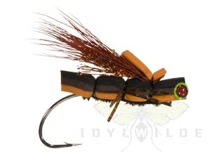 Basso's-Babygirl-Cicada