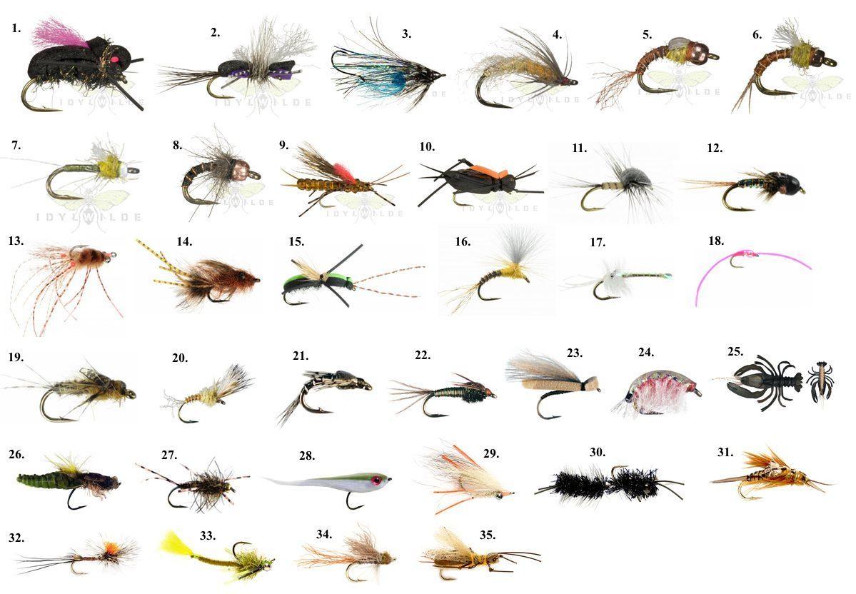 fly-patterns-2013