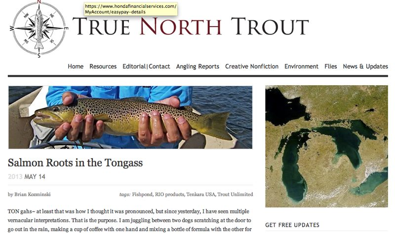 truth-north-trout