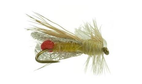 outrigger-yellow-sally