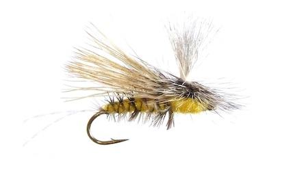 paralyzer-dry-fly