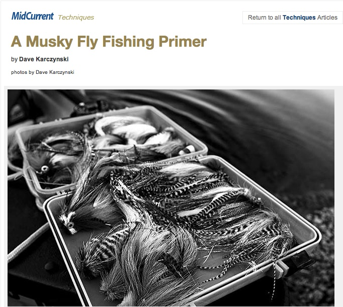 musky-fly-fishing