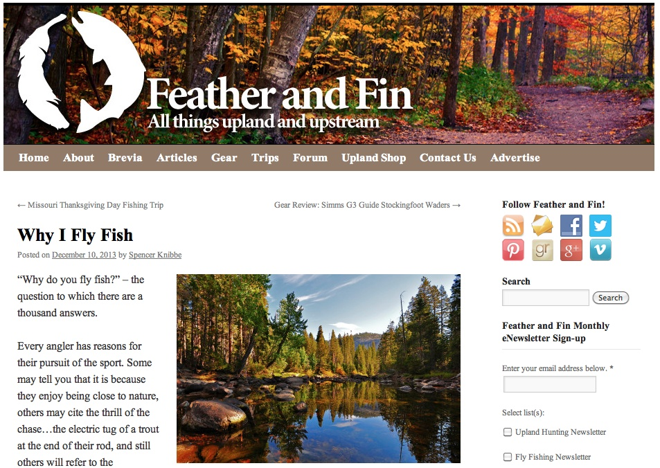 feather-and-fin