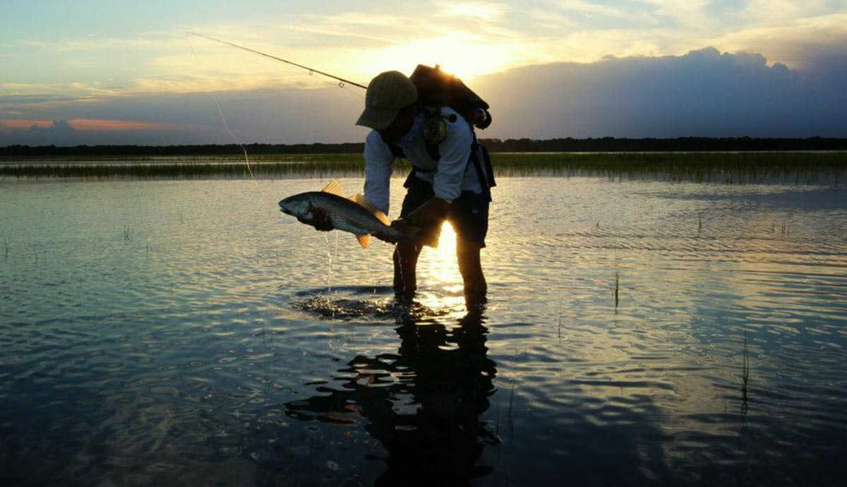 Flood tide redfish part 3 fly fishing gink and gasoline how photo by bryan bowers geenschuldenfo Gallery