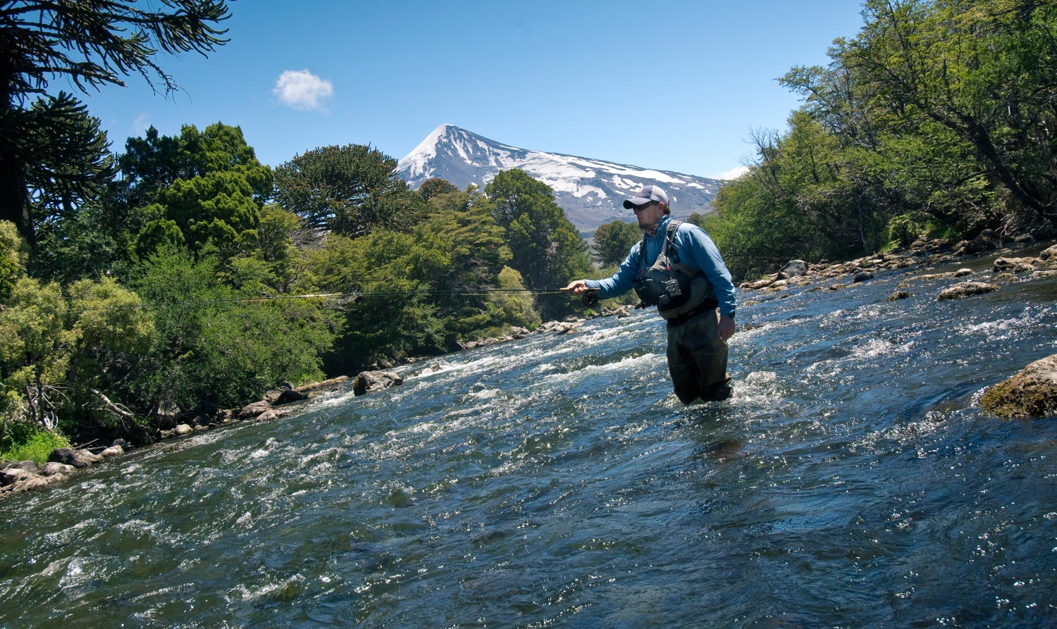 Patagonia 39 s endless summer fly fishing gink and for Fly fishing patagonia