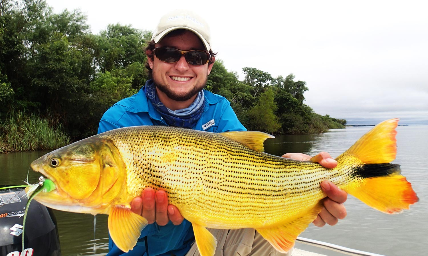 Big adventure patagonia trout and argentina golden dorado for Fishing in argentina