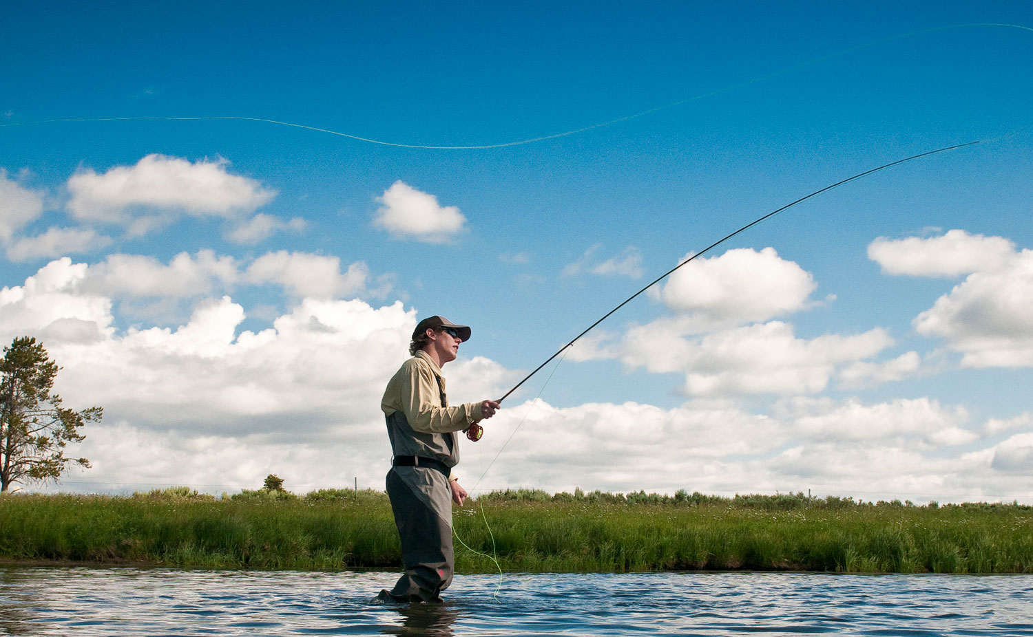 Understanding Fly Line Tapers and Diagrams Fly Fishing