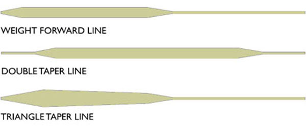Understanding fly line tapers and diagrams fly fishing for Types of fishing line