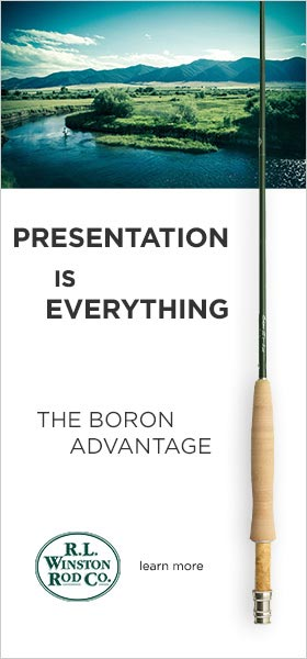 Boron-Adv-Presentation-B