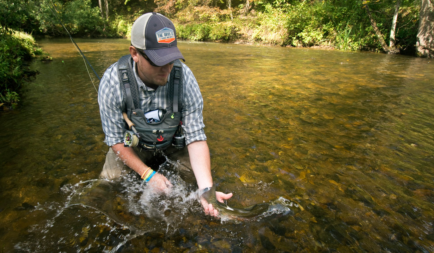 Improve Your Catch and Release Efforts