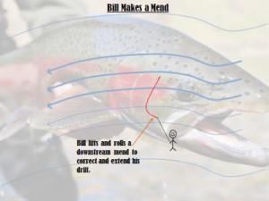 Bill-3