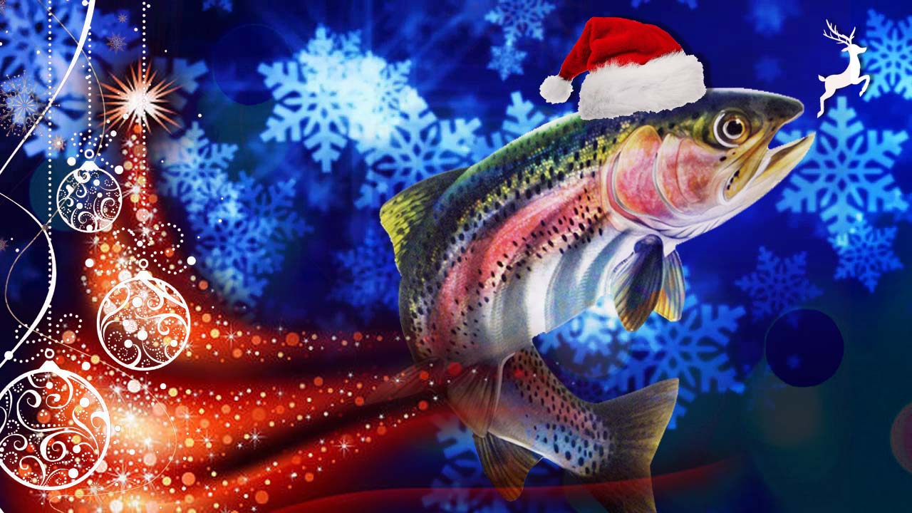 by justin pickett here are some great christmas gift ideas for the fly fishing enthusiast on your list the tree is up the elf is on the shelf and the