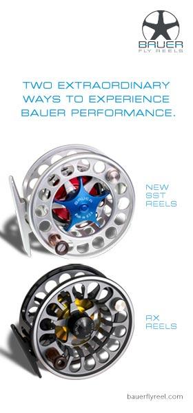Bauer-280x600