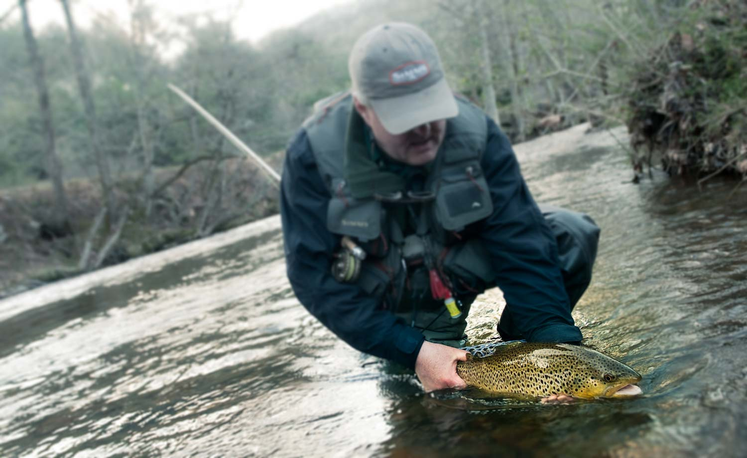 Creative visualization for anglers fly fishing gink for Fly fishing blogs